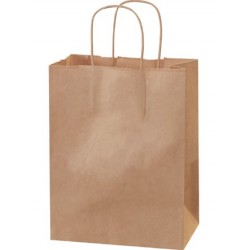 Shopping Bags w/Handles - Size Cub